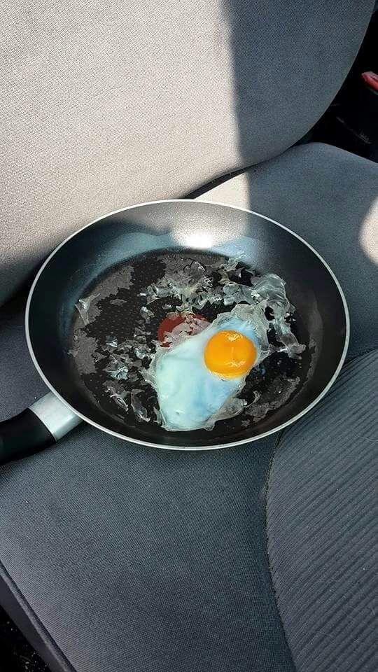 Huevo cocinado en el coche al sol